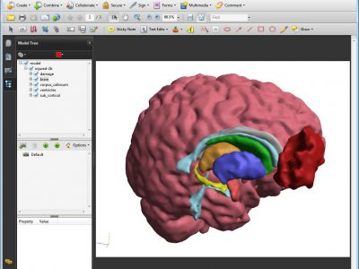 TJs Biomedical Imaging - 3D PDF - Interface